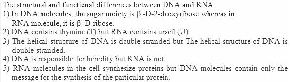 14.24 Ans Biomolecules CBSE