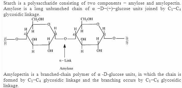 14.8-1 Ans Biomolecules CBSE Chemistry