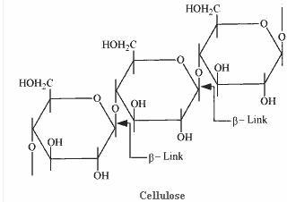 14.8-3 Ans Biomolecules CBSE Chemistry