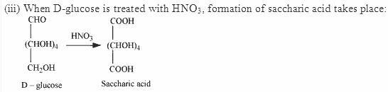 14.9-2 Ans Biomolecules CBSE
