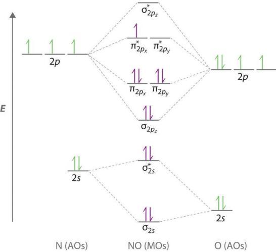 14 Molecular Orbital diagram of NO