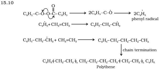 15.10 Ans Polymer