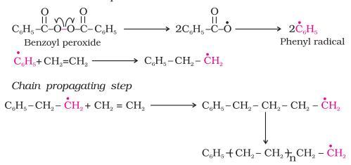 15 Chem