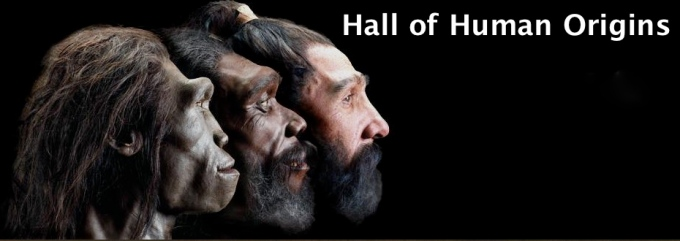 17 hall of human origin