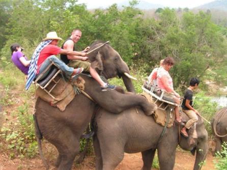 1a Elephant safari