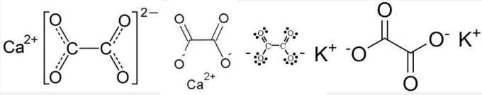 1a Oxalate Oxalato