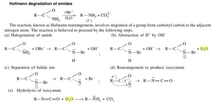 1c Hofmann degradation of amides