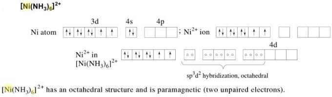 1c Ni(NH3)6 2+ is paramagnetic