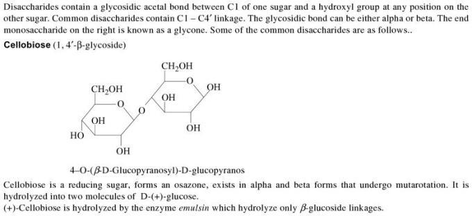 1d Disaccharides
