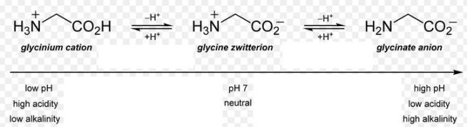 1e Glycinium cation