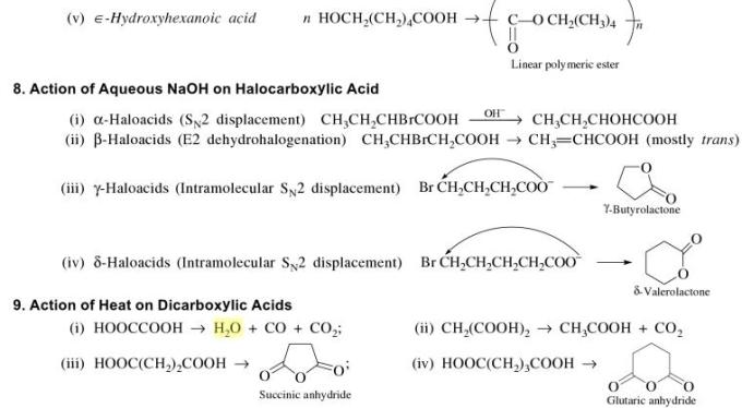 1l Action of Aqueous NaOH on Halocarboxylic acid