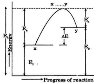 2 Explain the following terms on the potential energy diagram