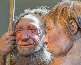 2 neanderthal man