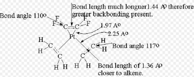 28c Back Bonding