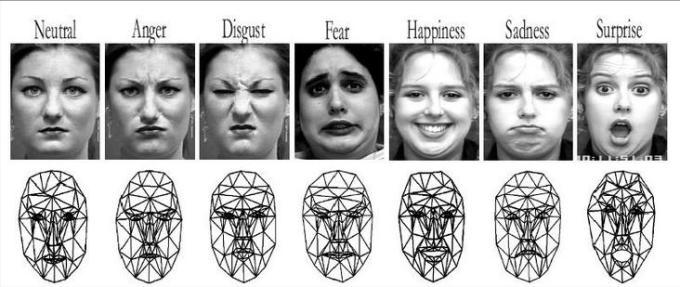 2e Emotions gaze pattern
