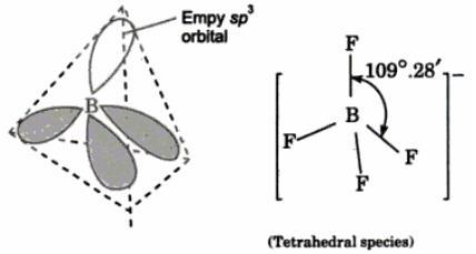 NCERT CBSE Standard 11 Chemistry Chapter 4 Chemical