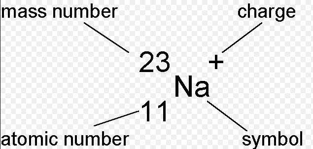 31b Atomic number mass