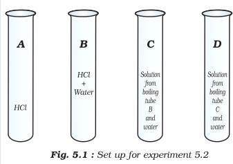 31b Fig 5.1