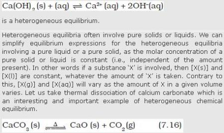 31d heterogenous equilibrium