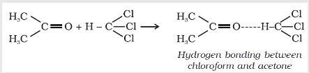 31d Hydrogen bonding