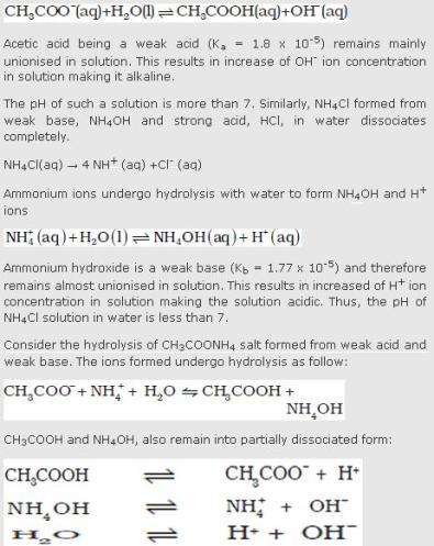 31e acetate ion