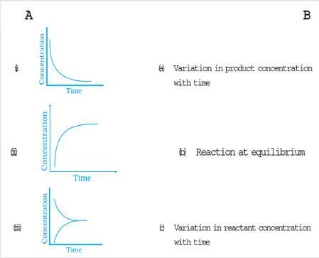 31e concentration time graph