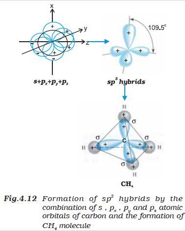31g Fig 4.12 sp3 hybrid