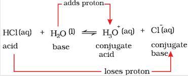 31h acid base