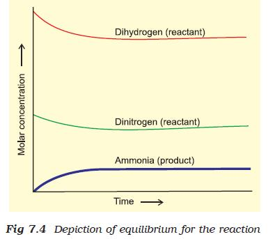35a Fig 7.4 Depiction of equilibrium