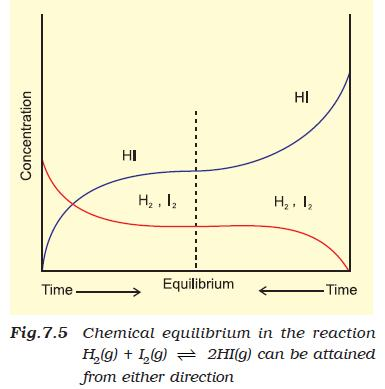 37a Fig 7.5 Chemical equilibrium