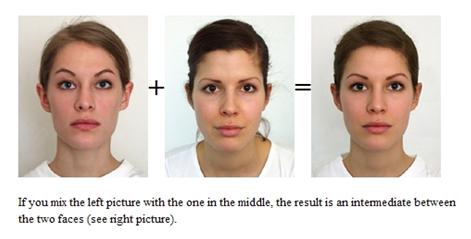 4 computer generated intermediate face