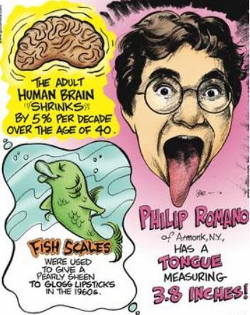 41a Adult Human brain shrinks 5 percent every decade