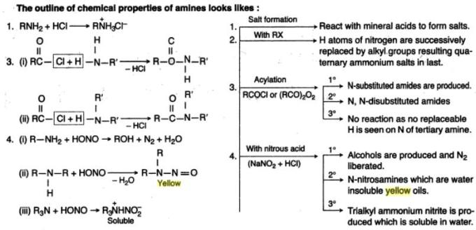 45b Chemical properties of Amines