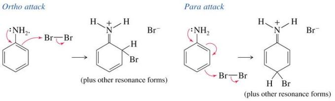 5 Bromination of Benzene Electrophilic substitution