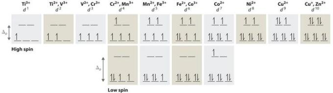 5 High and low spin electrons of various ions