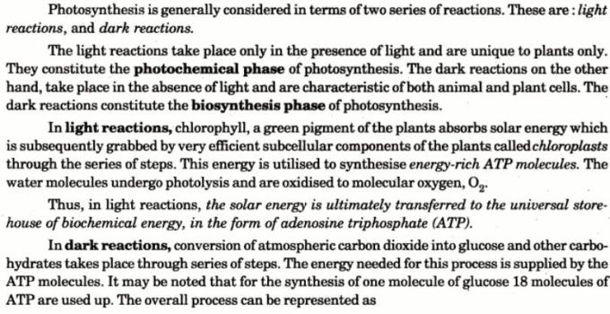 5 Photosynthesis