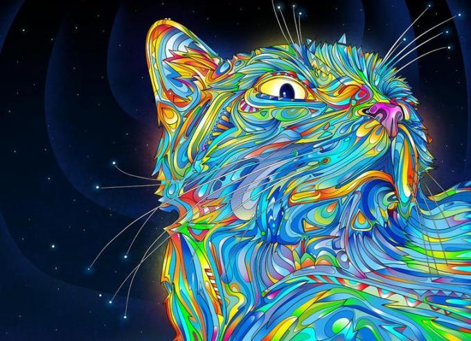 52b Cat holi kheleche