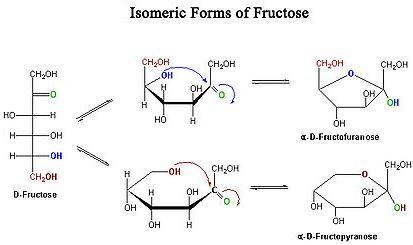 6 Isomeric forms of Fructose