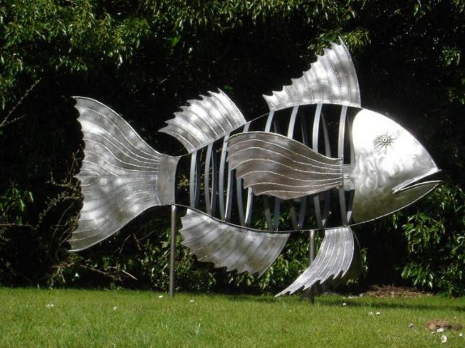 7 Mach naki fish