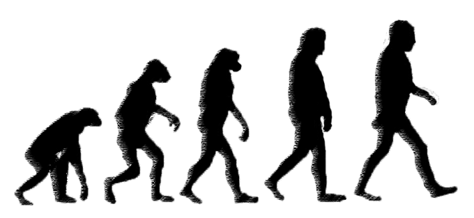 8 ape-human