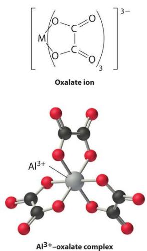 8 Oxalate ion and Al3+ complex