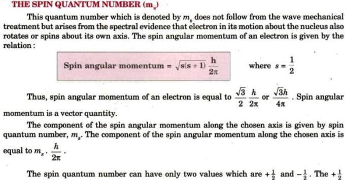 8 Spin Quantum Number