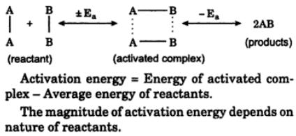 8 State the role of activated complex