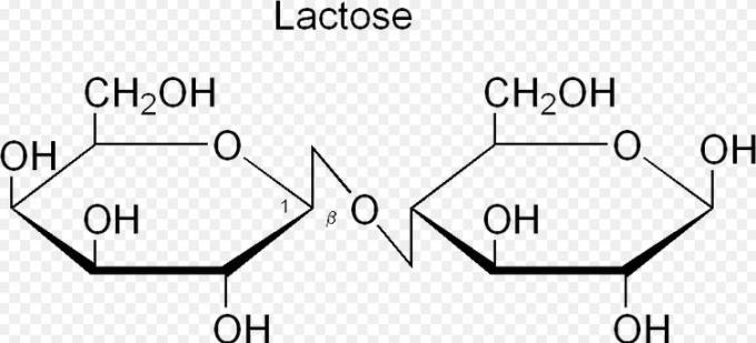 9 Lactose has Beta Glycosidic bonds