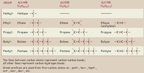 Alkene Homologous series