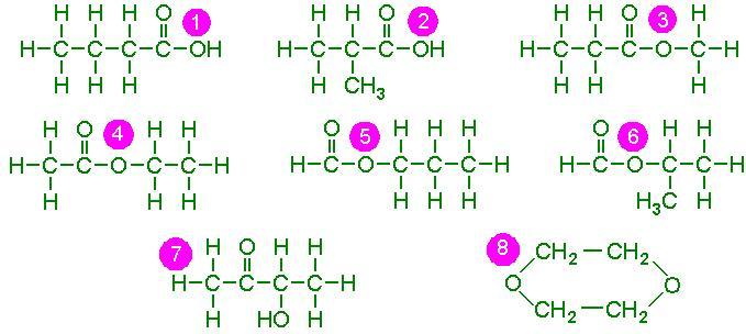 Butanoic Acid Isomers Related Keywords - Butanoic Acid ...