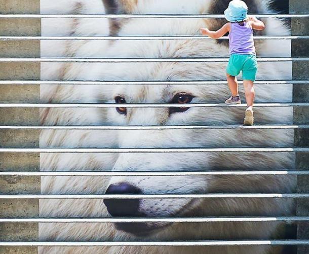 child climbing wolf steps