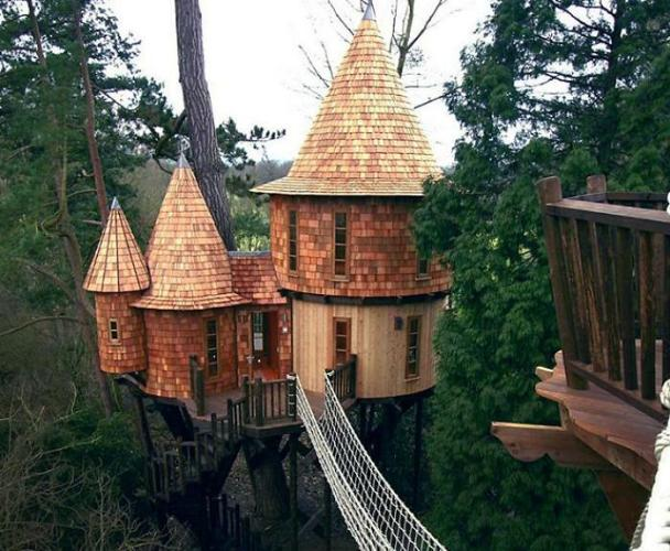 Conical treehouse