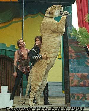 Liger Tiger Tigon 3
