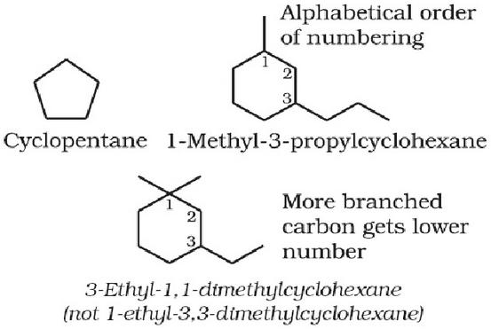 more branched C gets lower number in cyclic compounds
